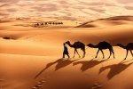 SaharaDesert-58c1a5603df78c353c3d525d.jpg
